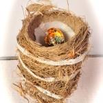 nesting-dt-sm